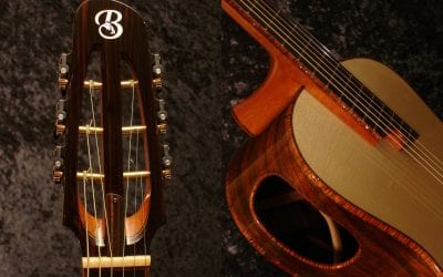 Elevated Fingerboard Acoustic Guitar