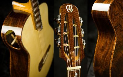 Slotted Headstock Steel string (Brazilian & Snakewood)